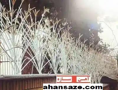 حفاظ لیلیوم سفید طلایی